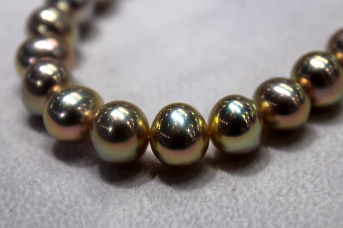 freshwater pearls with metallic luster