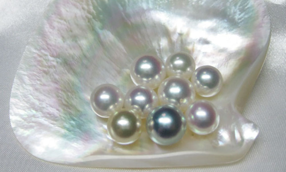 Pearl Eye Candy Treat of the Week: South Sea Pearl Luster