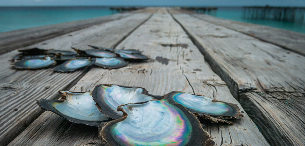 Where do Tahitian Pearls Come From?