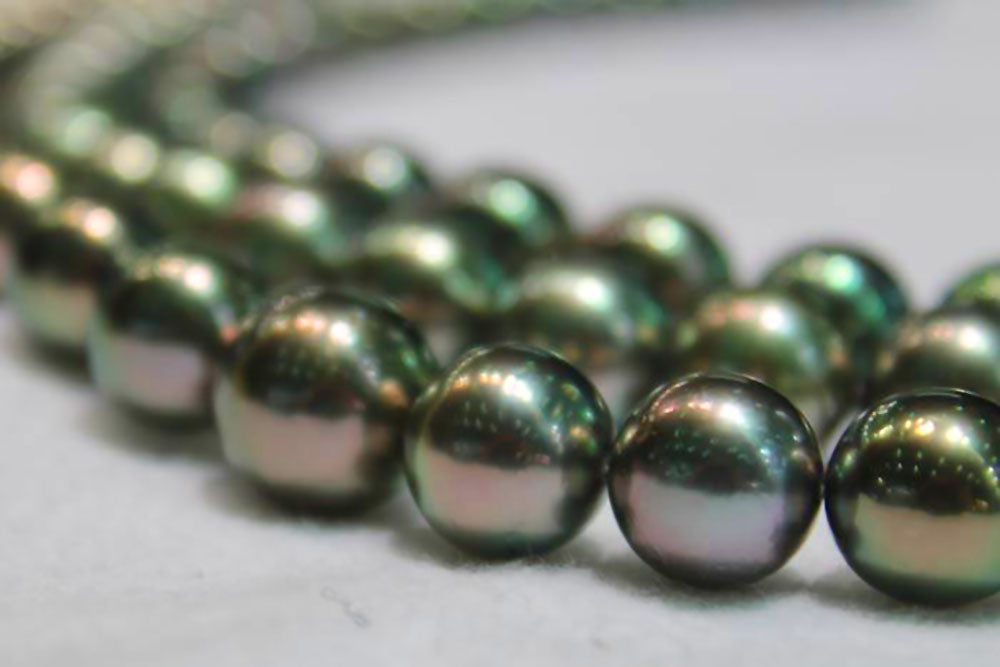On the Hunt for the Perfect Peacock Colored Tahitian Pearls