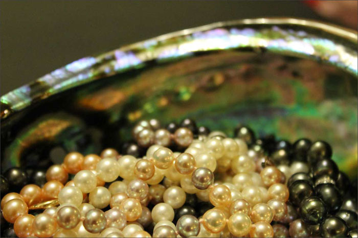 pearls in an abalone