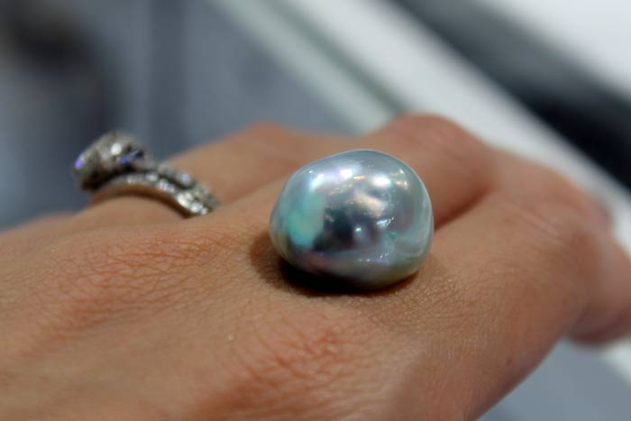 close up of a single south sea pearl