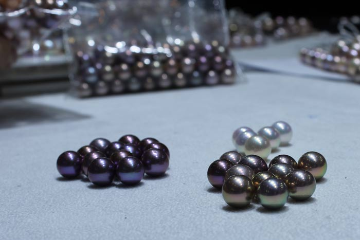 Edison pearls grouped by color