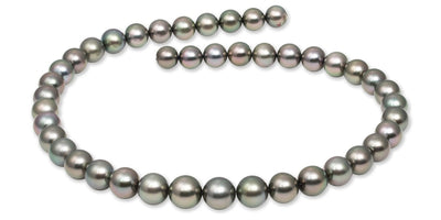 "18"" Round Tahitian Pearl Necklace: 8.3-10.9mm AAA"