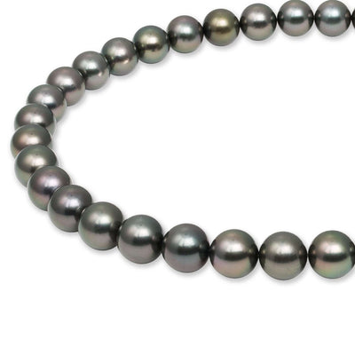 "18"" Round Tahitian Pearl Necklace: 10.1-11.7mm AAA"