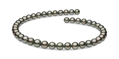 "18"" Round Tahitian Pearl Necklace: 9.0-11.0mm AAA"
