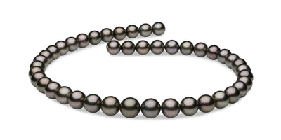 "18"" Round Tahitian Pearl Necklace: 9.0-11.0mm AA+/AAA"