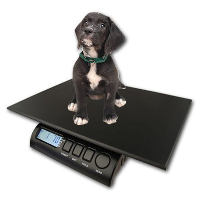 ZIEIS Digital Pet and Animal Scale - Z15P-DURA1216 (15# x 0.1oz / 7000g x 2g)