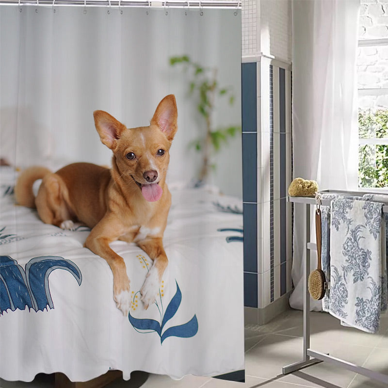 Custom Shower Curtains - Creative Gift