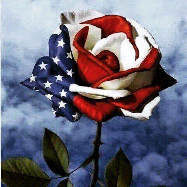 Happy 4th of July with Roses - BlingPainting
