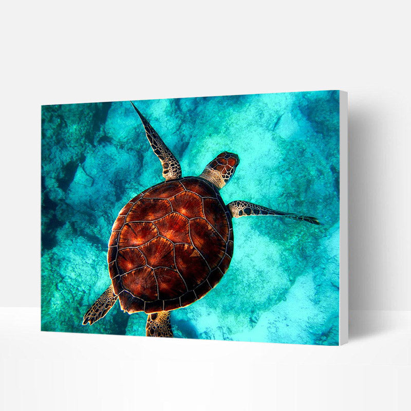 Paint by Numbers Kit - Diving Sea Turtle