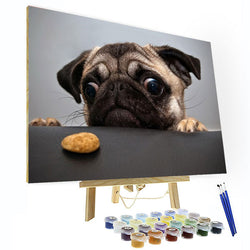 Paint by Numbers Kit - Cute Pug Dog - BlingPainting