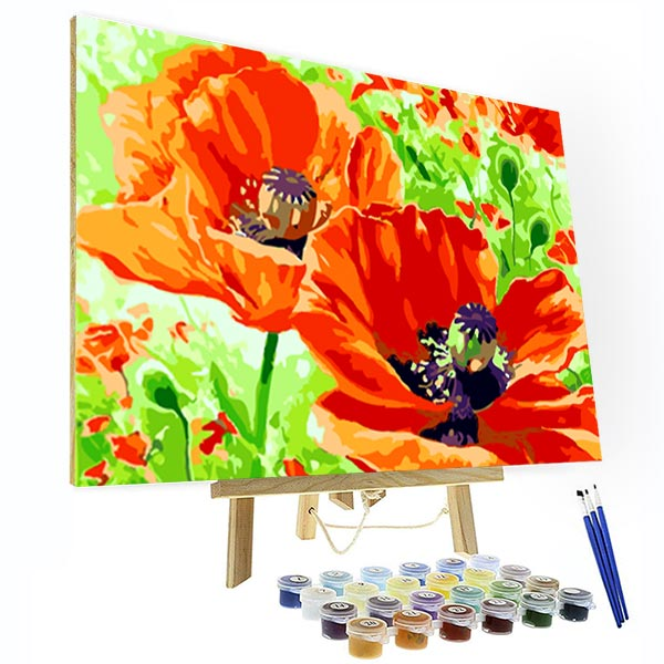 Paint by Number Kit - Poppy flower - BlingPainting