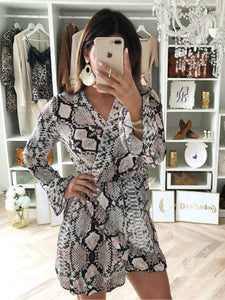 Animal Printed V Neck Long Sleeve Casual Dress