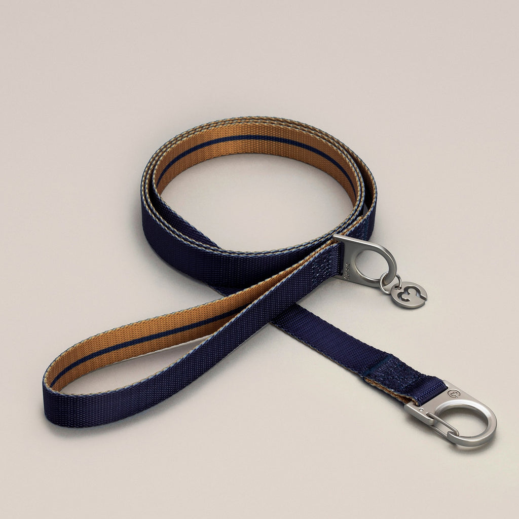 Luc leash