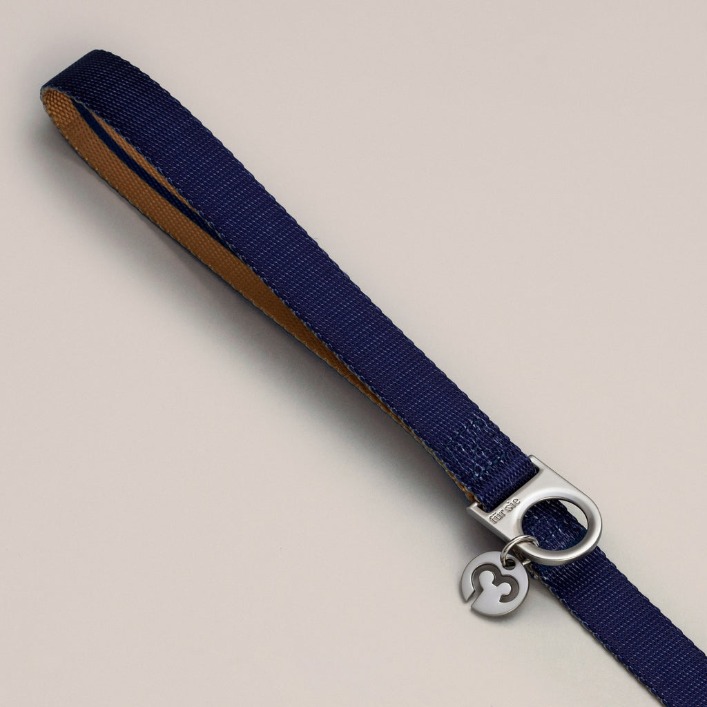 Luc leash handle with D-ring and charm