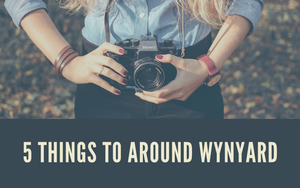 5 Things to do around Wynyard