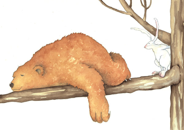 bear sleeping on branch