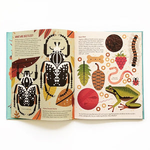 bonkers about beetles by owen davey