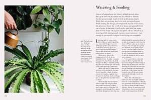 DR. Houseplant - guide to keeping your plants healthy and happy!