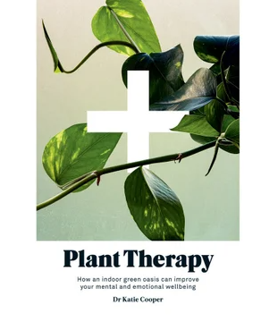 Plant Therapy - How an indoor green oasis can improve your mental and emotional wellbeing