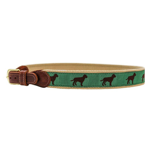 Buddy Belt - Chocolate Lab