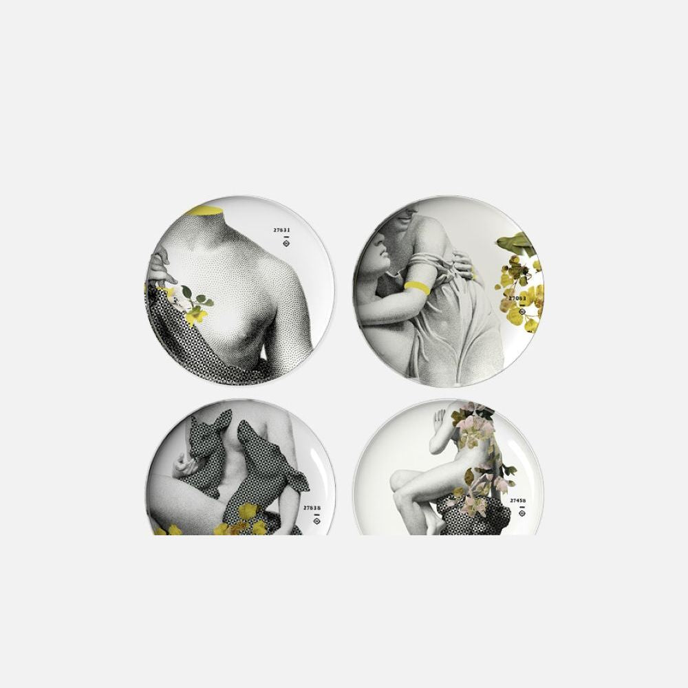 IBRIDE Set of 4 Different Plates Yuan Parnasse