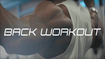 The Best Back Workouts From Team Performax