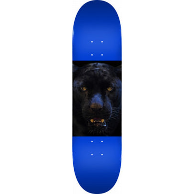 MINI LOGO DECK CHEVRON ANIMAL '14' PANTHER