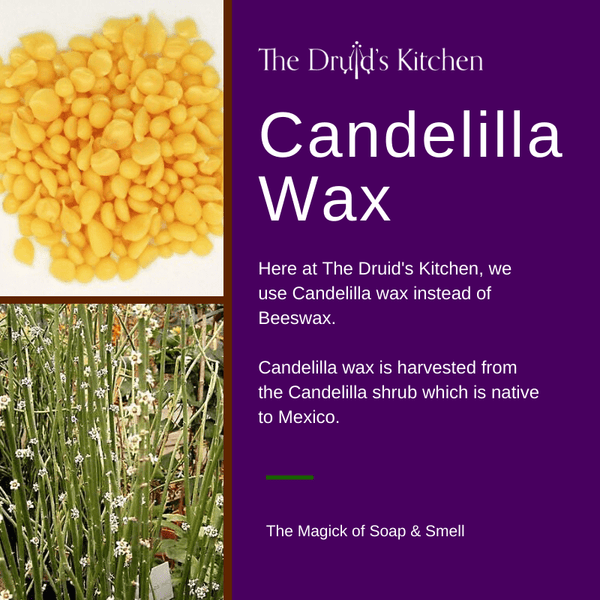 The Druid's Kitchen uses Candelilla Wax instead of Beeswax making our lotion bars and lip balms vegan friendly (unless otherwise stated)