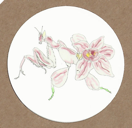 Mutant Orchid Mantis Sticker, Sticker - Team Manticore