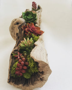 Tabletop grapevine faux succulent arrangement