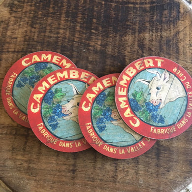 Cow eating grapes coasters (set of 4)