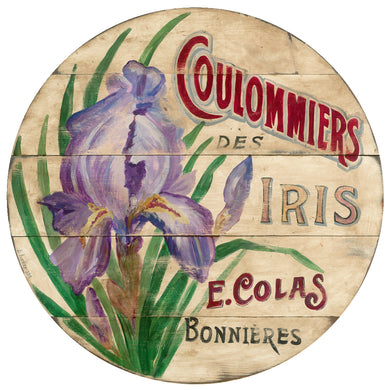 Purple Iris on cream Wall Art