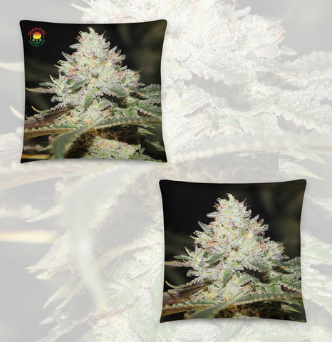 Grow Room Vibes Pillow