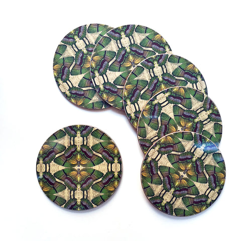 PATCH NYC Green Butterfly Coaster Set {AVCGB}