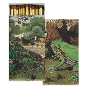 Frog with Landscape Matches (pack of 4 boxes)