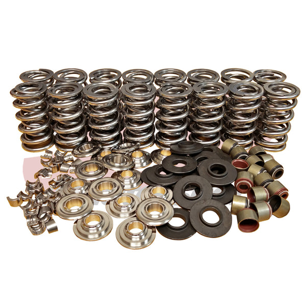 "BTR GM Gen V .660"" Lift Platinum Valve Spring Kit (SK007)"