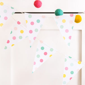 Pastel Rainbow Color Pennant Banner & a pink, green, and yellow pom-pom banner