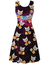 Load image into Gallery viewer, Womens Pizza Cat Sleeveless Crewneck Casual A-line Dress