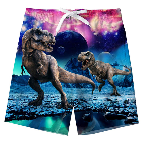 Boy's Dinosaur Graphic Swimming Trunks Beach Shorts with Pockets