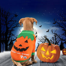 Load image into Gallery viewer, Halloween Costumes for Dog Clothes for Dogs Cat Chihuahua Winter Dog Coat  Pet Clothing