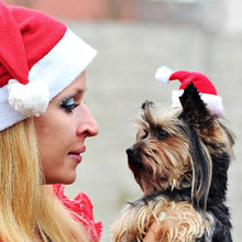 Load image into Gallery viewer, 1pc Christmas Pet Hat Santa Claus Hat for Cats Dogs Puppy