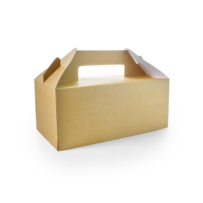 Standard carry pack (22.5 x 9.5 x 12cm)