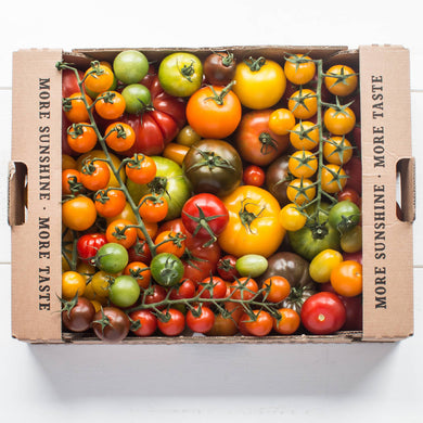 Isle of Wight 3kg Mixed Speciality Tomatoes - Harvest Bundle