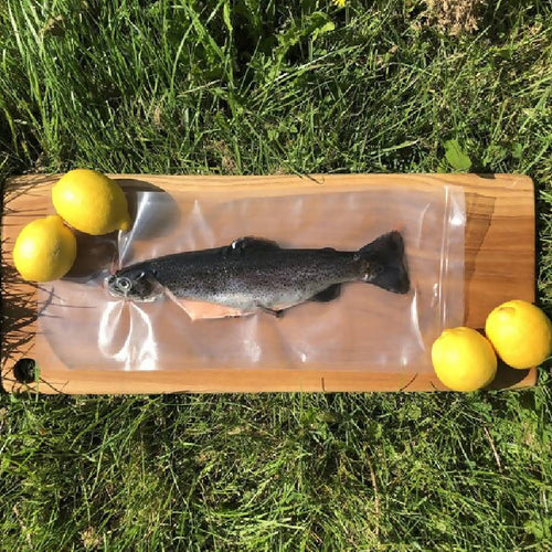 Fresh Whole Small Trout - Chalk Stream