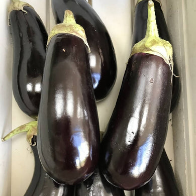 Aubergine - Harvest Bundle