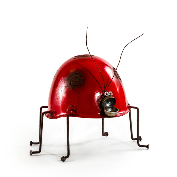 Helmet Lady bug