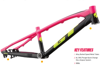 GT 2021 Speed Series Race Frame *Limited Edition*
