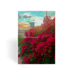 Bougainvillea. Tower 2 Greeting Card - Bougainvillea. Tower 2. Oceanside North Strand.